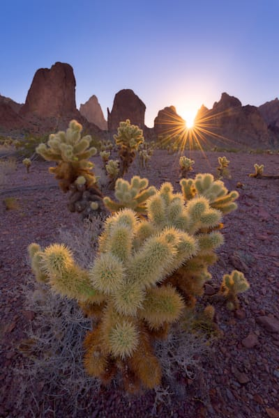 Kofa Mountains Art | Nelson Fine Art Printing