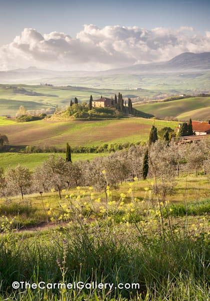 Tuscan Evening Art | The Carmel Gallery