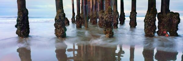 """""""Starfish Pier"""""""
