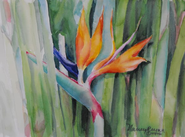 Bird of Paradise Art for Sale