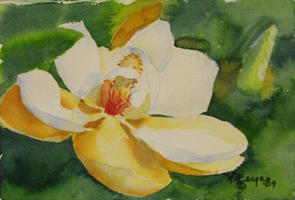Magnolia Art for Sale