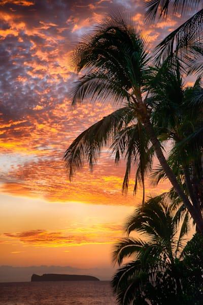 """Maui Sunset"""