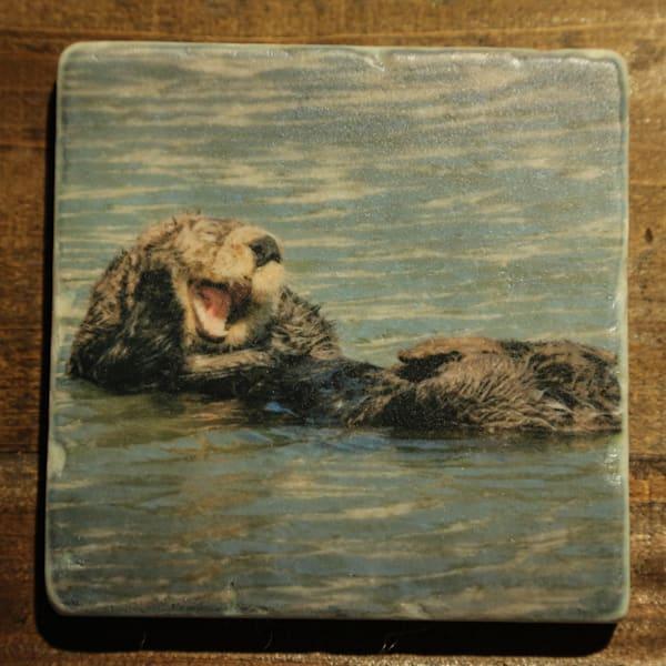 """""""Marine Life"""" - 4x4 Stone Coaster Set"""