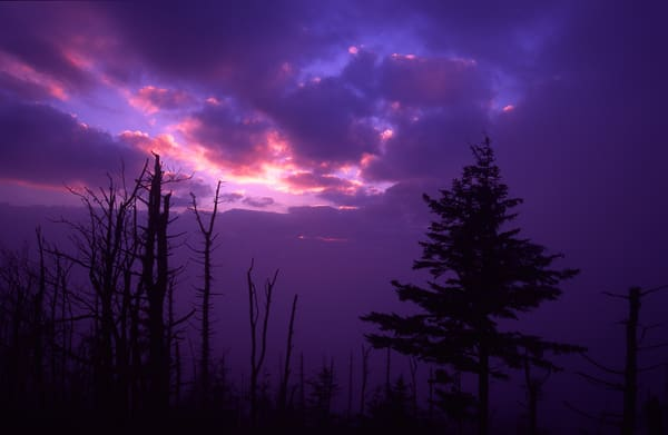 Twilight at Clingmans Dome