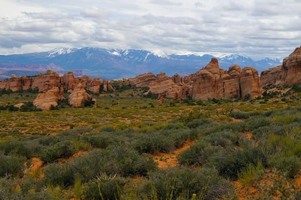 The La Sal Mountains from Devils Garden