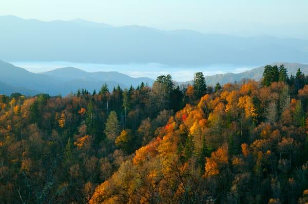 Autumn at Newfound Gap