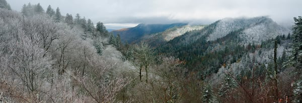 A Panorama of Winter