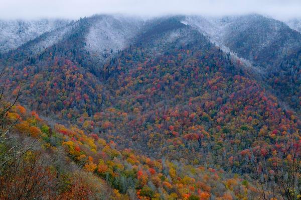 Great Smoky Autumn