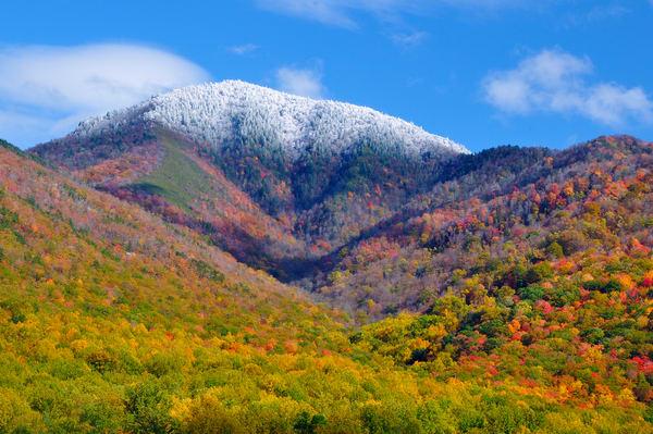 Autumn View of Mount Le Conte