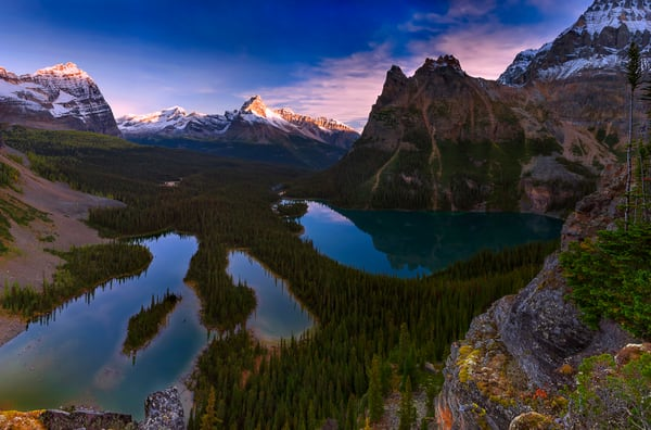 Lake O'Hara and Opabin Plateau