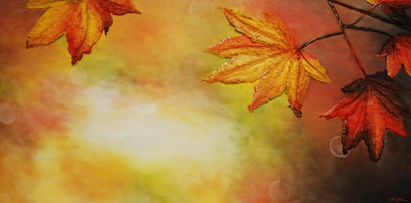 Prints of Maple Morn, a fusion art landscape painting of sunlight glowing through autumn maple leaves by  fine artist Alison Galvan