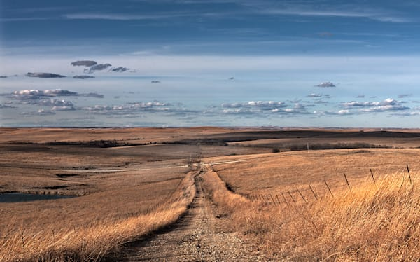 Prairie Road, the Kansas Flint Hills - color