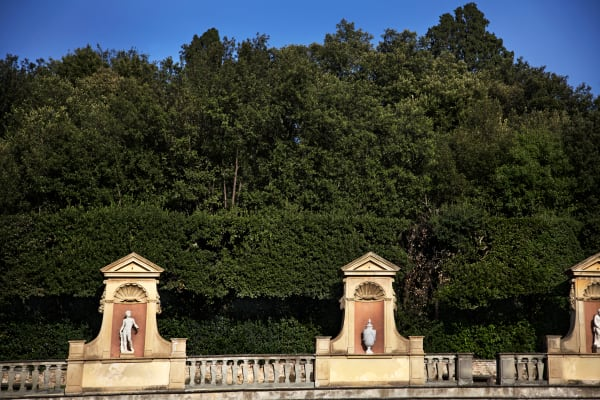 Shop for the Boboli Gardens Photographic Art   Decor for your space