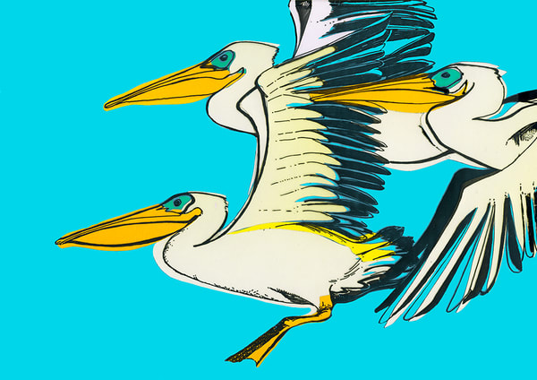 Pelicans Art | Fine Art New Mexico