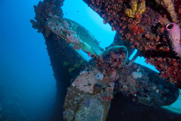 Photograph of underwater shipwreck propeller