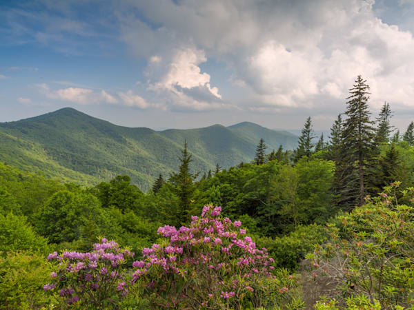 davidknightphotography-sunset-on-the-balds-blue-ridge-parkway-tennessee-roan-mountain-18