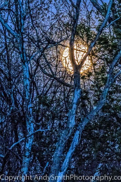 fine art photograph Full Moon at Duck Pond