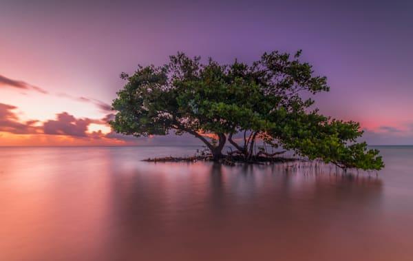 davidknightphotography-ocean-beaches-sunset-atlantic-pier-152