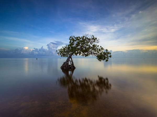 davidknightphotography-ocean-beaches-sunset-atlantic-pier-151
