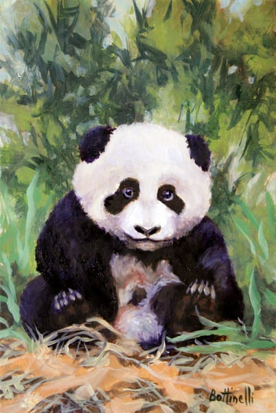 Panda Cub   Custom Size Print Art | Bottinelli Fine Art