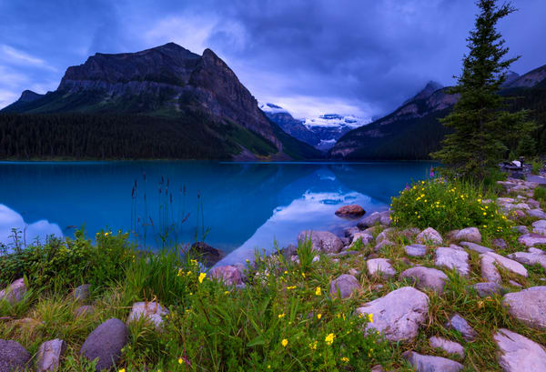 Lake Louise - mood in Blue. Banff National Park | Canadian Rockies | rocky Mountains|