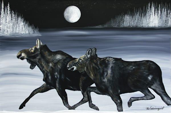 Night Moves (718)