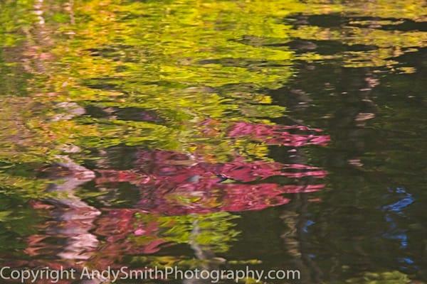 Fall Reflection fine art photograph
