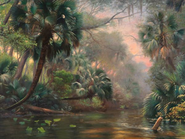 Wekiva Palms Art | Sally C. Evans Fine Art