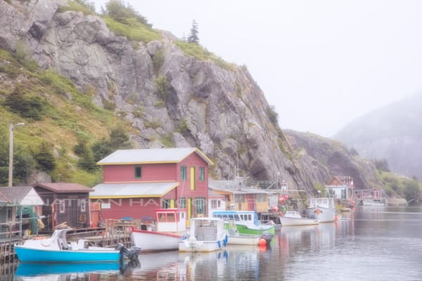In The Fog Quidi Vidi