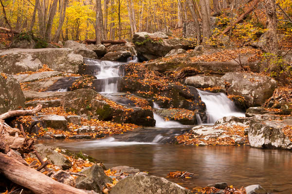 Waterfall Wall Art: Autumn on the Rose River
