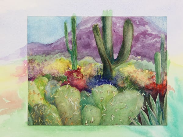 Arizona in Bloom by Madeline Tollefson