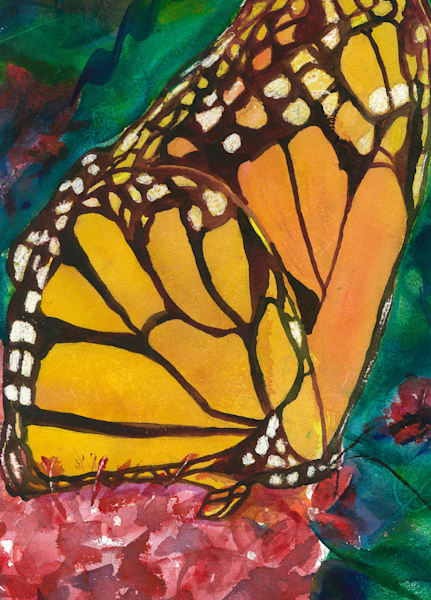Monarch Butterfly by Madeline Tollefson