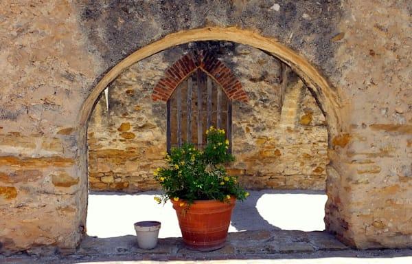 Flower Pot in Arch--Ireland