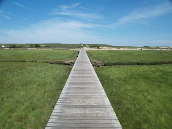 Pathway to Somewhere