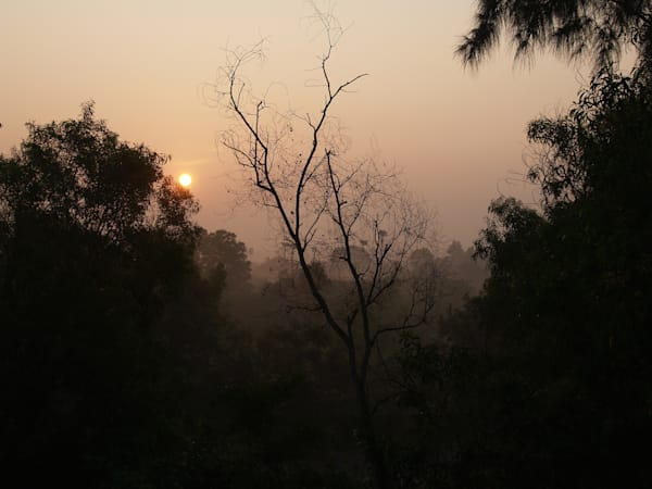 Early Morning Sunrise in India