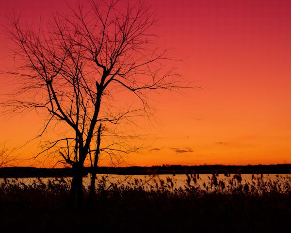 Burning Skies Landscape Photo Wall Art by Landscape Photographer Melissa Fague