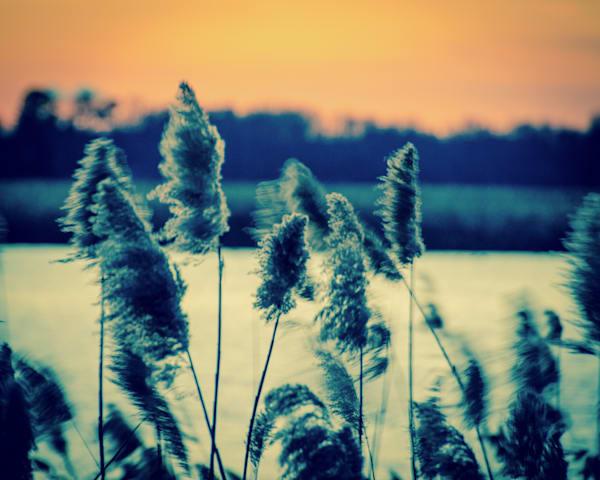Sunset on the Marsh 2 Landscape Photo Wall Art by Landscape Photographer Melissa Fague
