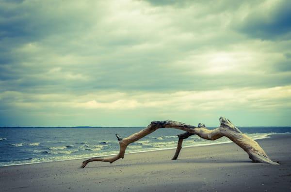 The Cove Landscape Photo Wall Art by Landscape Photographer Melissa Fague