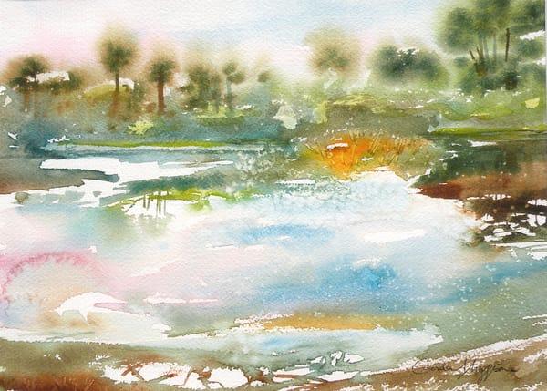 Colors of Florida | Zen Landscapes | Gordon Meggison IV