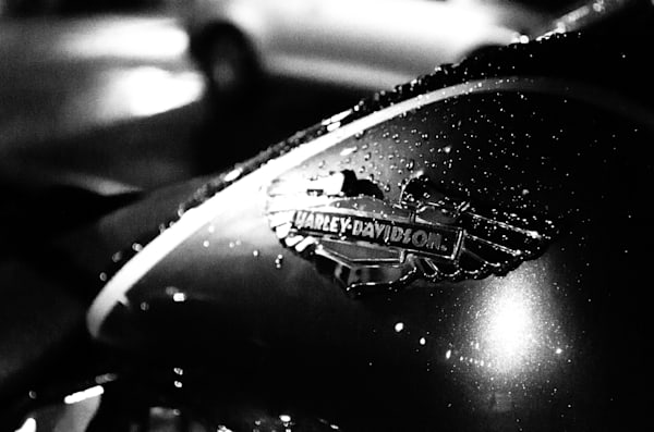 Harley in the Rain Still Life Photography by Landscape and Nature Photographer Melissa Fague