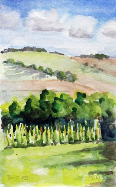Summer Afternoon, Bond Rd Art | David Beale