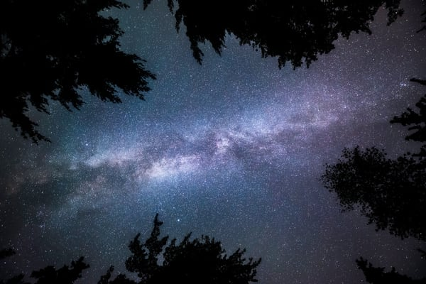 Nightfall, the Milky Way galaxy as seen overhead silhouetted by trees in Maine