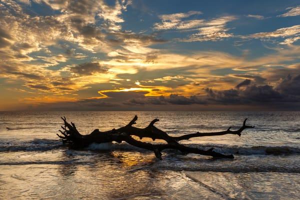 Golden Isle Sunrise