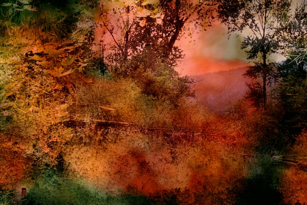 Impressionistic  Nature Photography. Prints on canvas or paper to purchase..