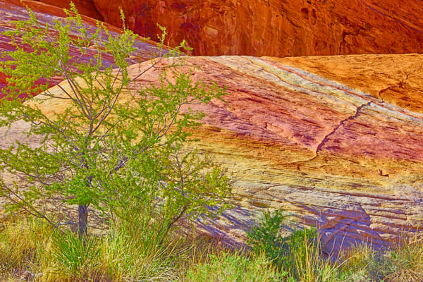 Valley of Fire 4063