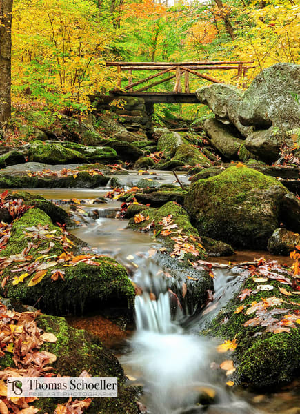 peak fall foliage in Connecticut's Macedonia Brook park