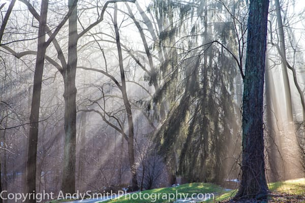 Winter Sun Rays fine art photograph