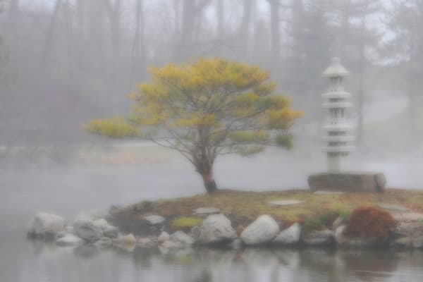 """Japanese Garden In The Mist"""
