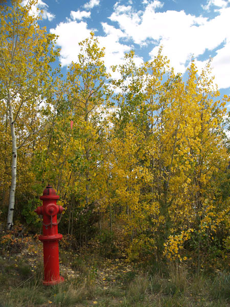 Red Fire Hydrant Among Autumn Leaves