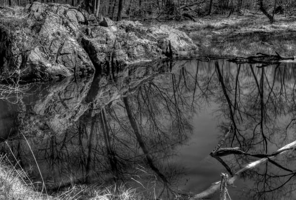 Reflections I Of Great Falls Art | http://www.michaelpucciarelli.com